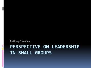 Perspective on Leadership in small groups