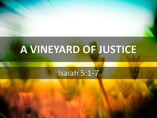 A VINEYARD OF JUSTICE