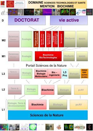 DOMAINE  SCIENCES TECHNOLOGIES ET SANTE  MENTION   BIOCHIMIE