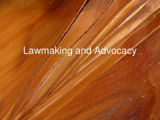 Lawmaking and Advocacy