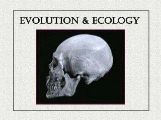 Evolution & Ecology