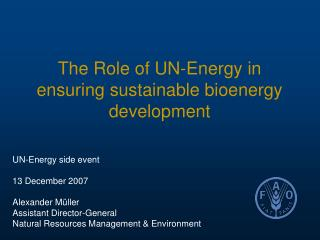 The Role of UN-Energy in ensuring sustainable bioenergy development