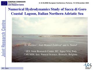 Numerical Hydrodynamics Study of Sacca di Goro Coastal  Lagoon, Italian Northern Adriatic Sea