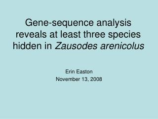 Gene-sequence analysis reveals at least three species hidden in Zausodes arenicolus