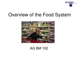 Overview of the Food System