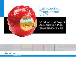 Introduction Programme 2012