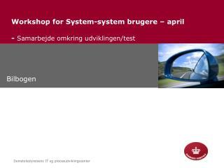 Workshop for System-system brugere – april  -  Samarbejde omkring udviklingen/test
