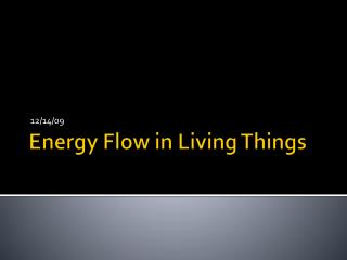 Energy Flow in Living Things