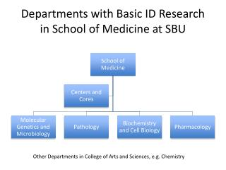 Departments with Basic ID Research  in School of Medicine at SBU