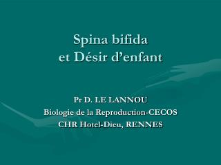 Spina bifida et Désir d'enfant