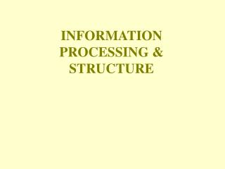 INFORMATION PROCESSING & STRUCTURE