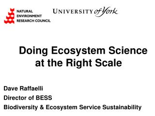 Doing Ecosystem Science at the Right Scale