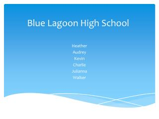 Blue Lagoon High School
