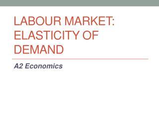 Labour Market:  Elasticity of Demand