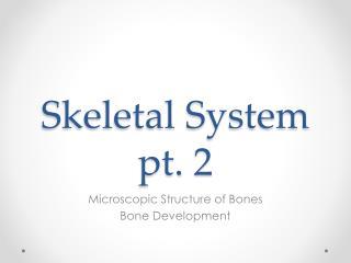 Skeletal System pt. 2