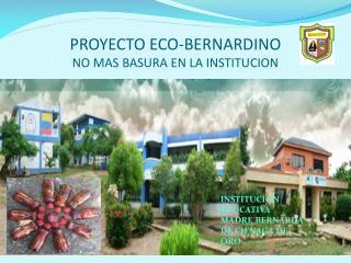 PROYECTO ECO-BERNARDINO NO MAS BASURA EN LA INSTITUCION