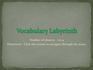 Vocabulary Labyrinth