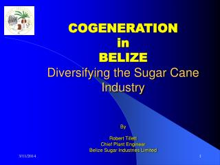 COGENERATION in  BELIZE Diversifying the Sugar Cane Industry   By   Robert Tillett Chief Plant Engineer Belize Sugar Ind