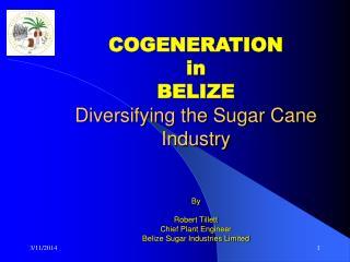 COGENERATION in  BELIZE Diversifying the Sugar Cane Industry   By   Robert Tillett Chief Plant Engineer Belize Sugar Ind
