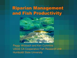 Riparian Management and Fish Productivity