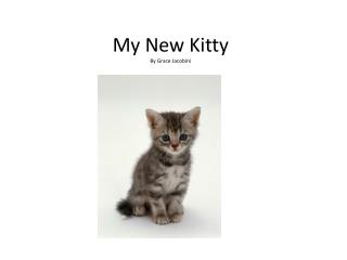 My New Kitty By Grace  Jacobini