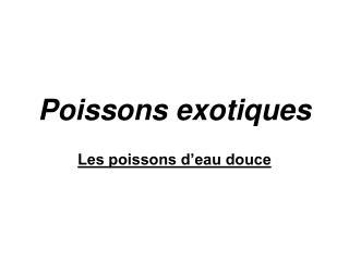 Poissons exotiques