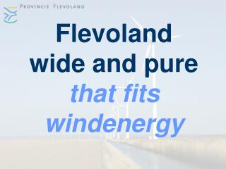 Flevoland wide and pure that fits  windenergy
