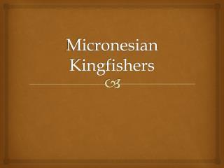 Micronesian Kingfishers