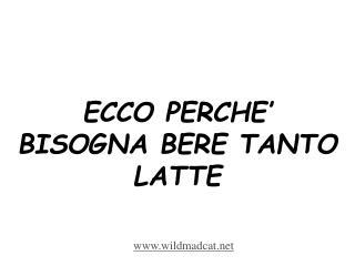ECCO PERCHE' BISOGNA BERE TANTO LATTE