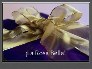 ¡La Rosa Bella!