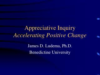 Appreciative Inquiry Accelerating Positive Change
