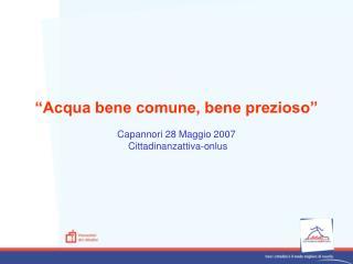 """""""Acqua bene comune, bene prezioso"""" Capannori 28 Maggio 2007  Cittadinanzattiva-onlus"""