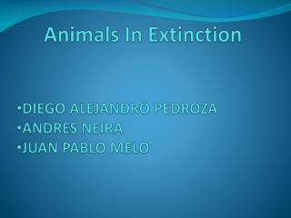 Animals In  Extinction