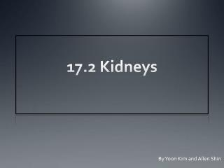 17.2 Kidneys