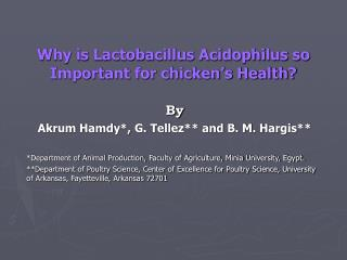 Why is Lactobacillus Acidophilus so Important for chicken's Health?