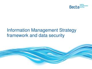 Information Management Strategy framework and data security