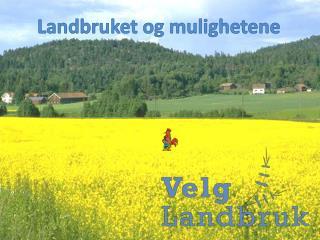 Landbruket og mulighetene
