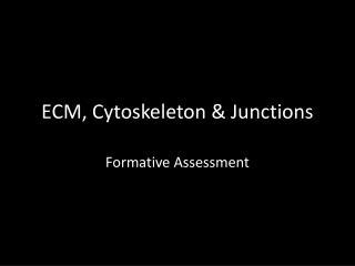 ECM, Cytoskeleton & Junctions