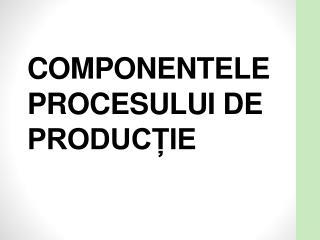 COMPONENTELE PROCESULUI DE PRODUCȚIE