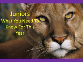 Juniors What You Need To Know For This Year