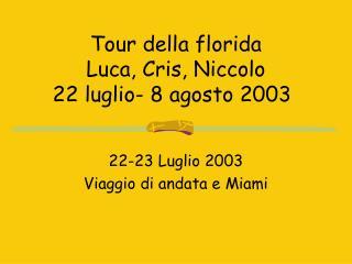 Tour della florida  Luca, Cris, Niccolo 22 luglio- 8 agosto 2003