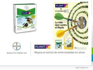 Mejora el control de enfermedades en olivar