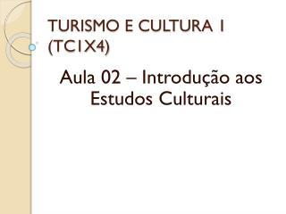 TURISMO E CULTURA 1 (TC1X4)