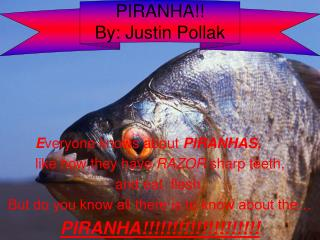 PIRANHA!! By: Justin Pollak
