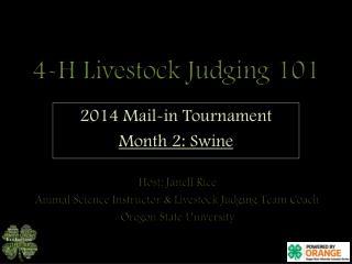 4-H Livestock Judging 101