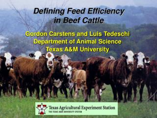 Gordon Carstens and Luis Tedeschi Department of Animal Science Texas AM University