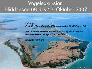 Vogelexkursion  Hiddensee 08. bis 12. Oktober 2007