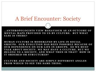 A Brief Encounter: Society