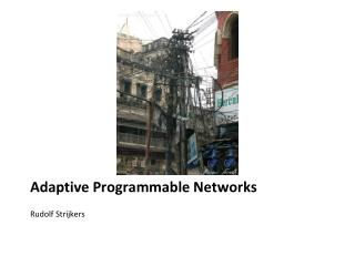 Adaptive Programmable Networks