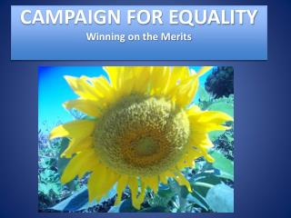 CAMPAIGN FOR EQUALITY Winning on the Merits